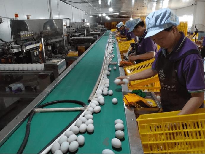 广西北部湾减税降费释放幸福滋味