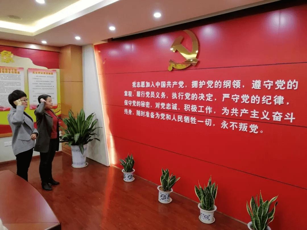 """吉安市税务师行业党总支召开""""不忘初心、牢记使命""""专题民主生活会"""