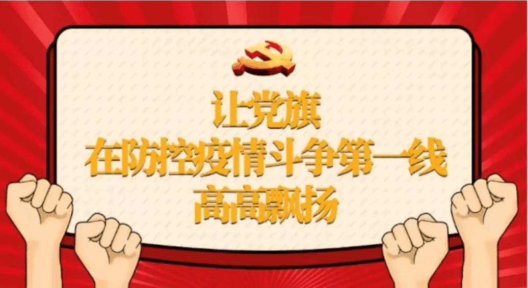 京洲联信(北京)税务师事务所党支部全力支援疫情防控工作