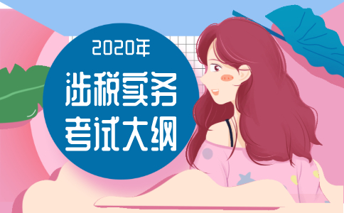 2020年《涉税服务实务》考试大纲!