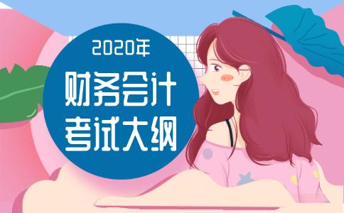 2020年《财务与会计》考试大纲!